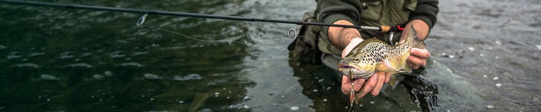 Pesca de la trucha