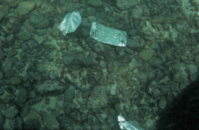 plásticos en el fondo