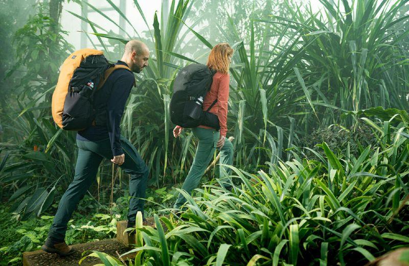FORCLAZ TREK TROPICAL SS21 Lille tropical greenhouse
