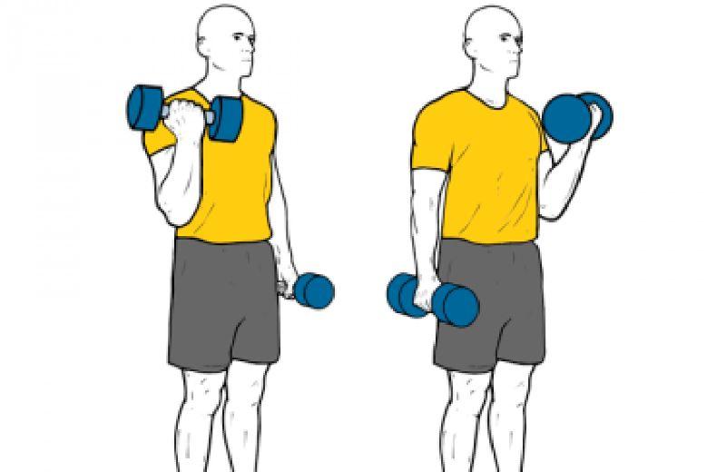 curl-de-biceps-