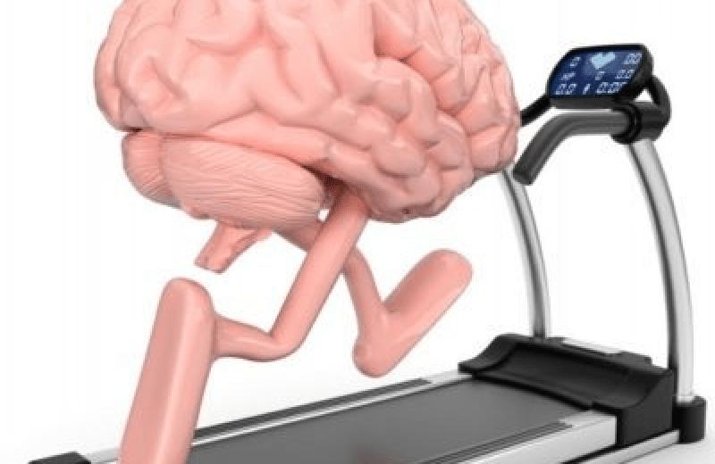 cerebro-ejercicio-e1527521938236-400x315