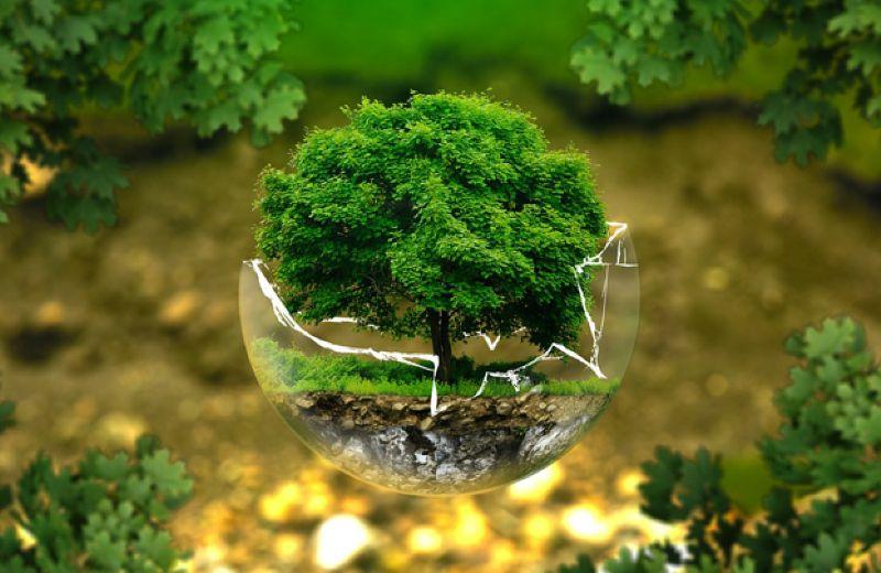 laboratorio-diseno-ecologico