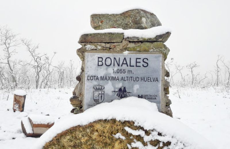 Pico Bonales