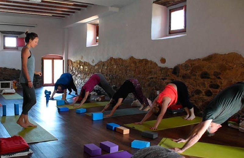 Practicando el perro boca abajo en la clase de yoga
