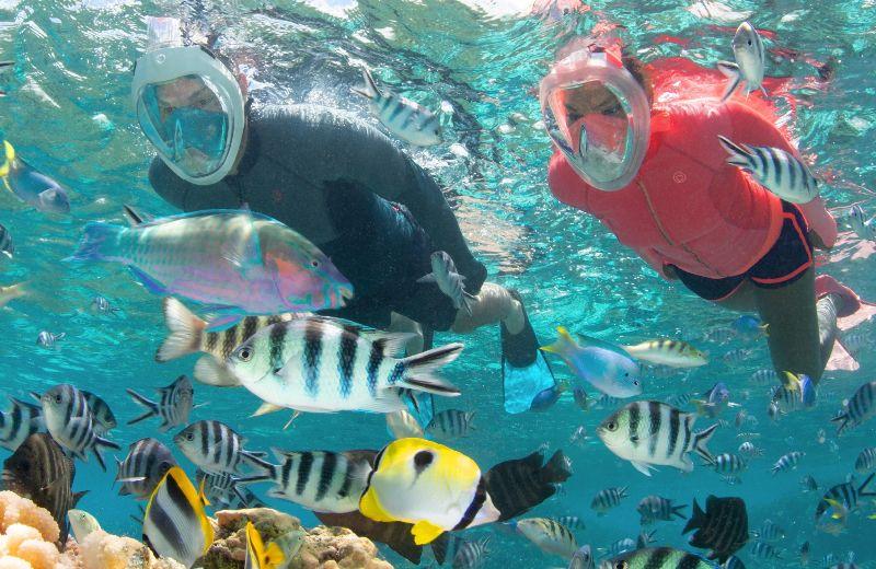 SUBEA Masque Easybreath 500 corail  AH20 PE19 - 001 --- Expires on 13-10-2022