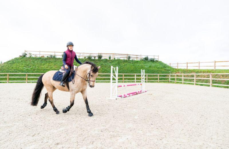 entrenamiento pony