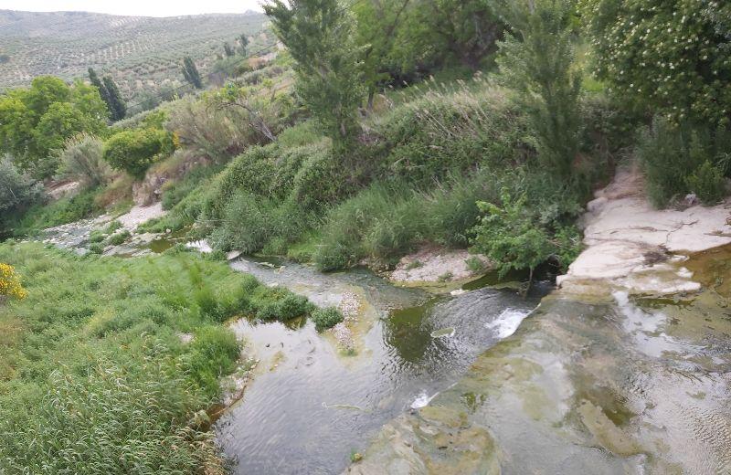 Río Eliche