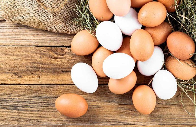 portada-huevos-t