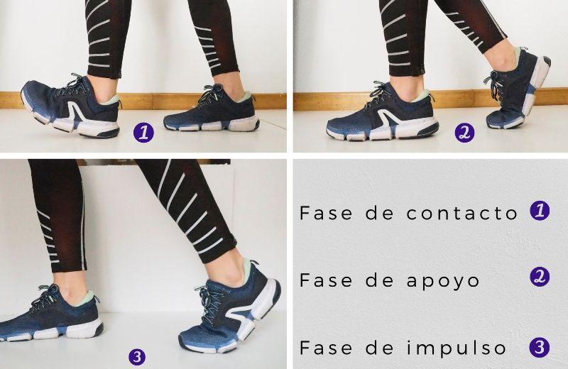 Fases del pie al caminar