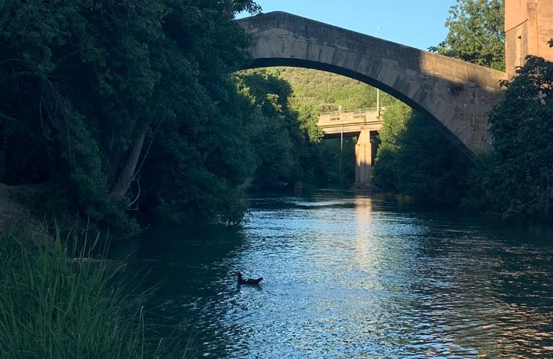 Río Ega2