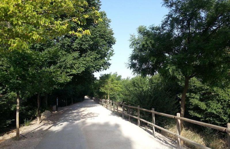 Vía Verde Canal de María Cristina