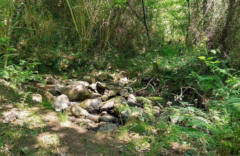 arroyo-frades-ferreria-urdandegieta-el-regato