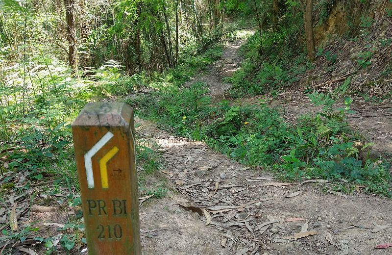 Ruta-ferreria-urdandegieta-el-regato-(17)