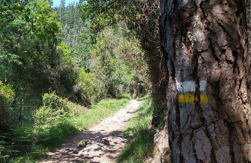 Ruta-ferreria-urdandegieta-el-regato-(4)