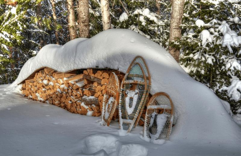 winter-754796_640