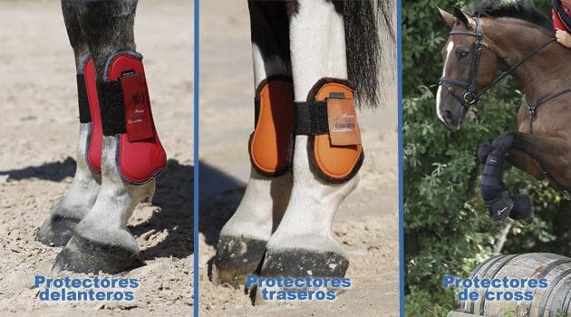 """""""Más vale prevenir que curar"""". La seguridad del caballo"""