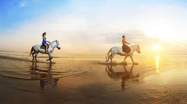 Visita la playa a caballo