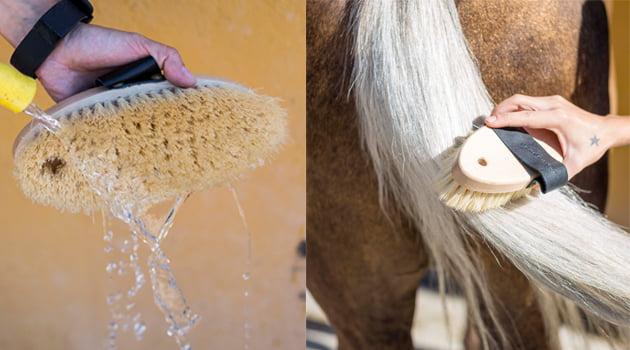peinar cola caballo