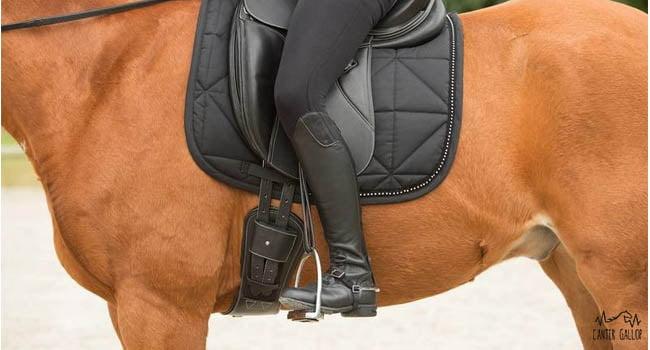 incomodidad del caballo el salvador y