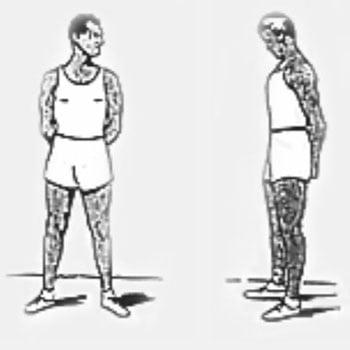 La flexibilidad del jinete