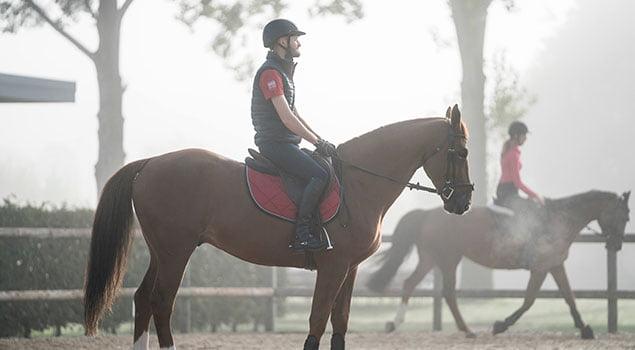 rutina del caballo