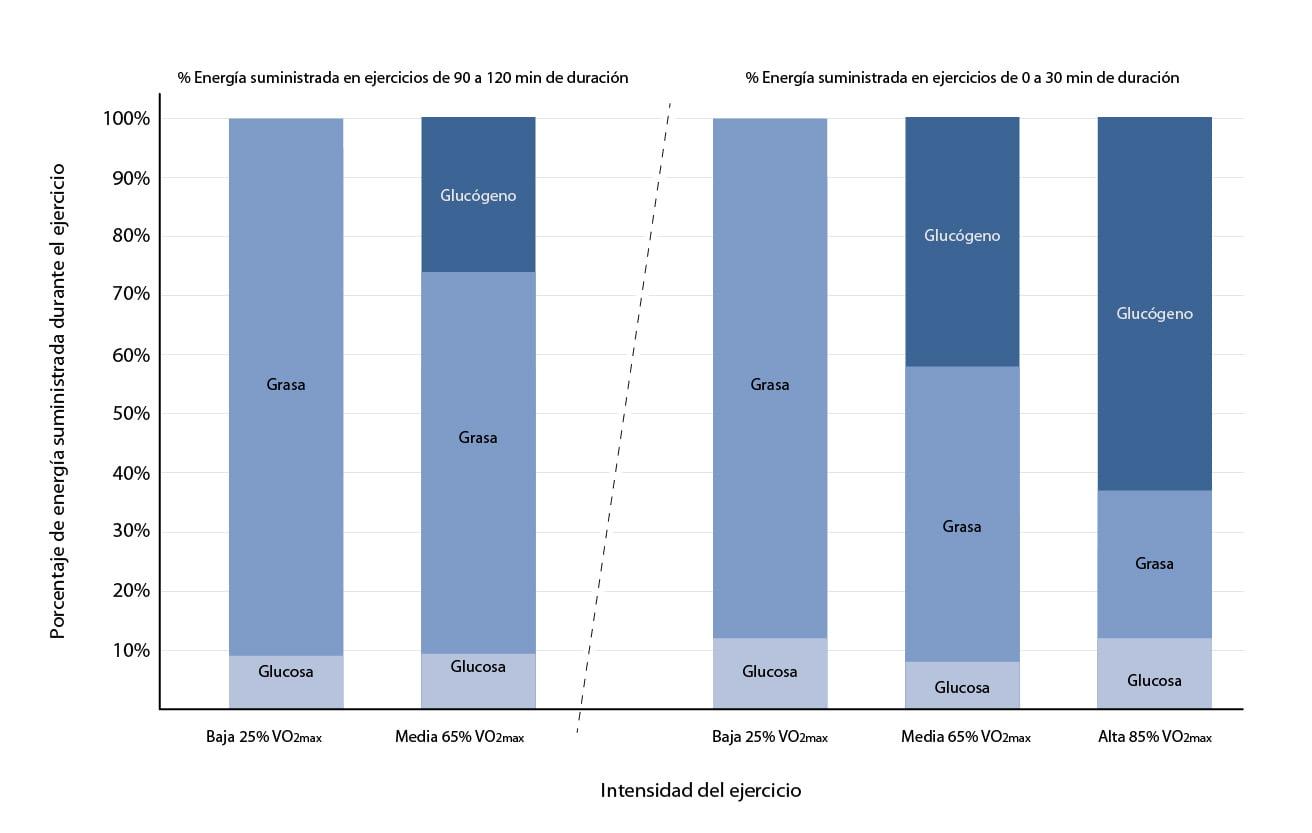 Porcentaje de energía suministrada durante el ejercicio