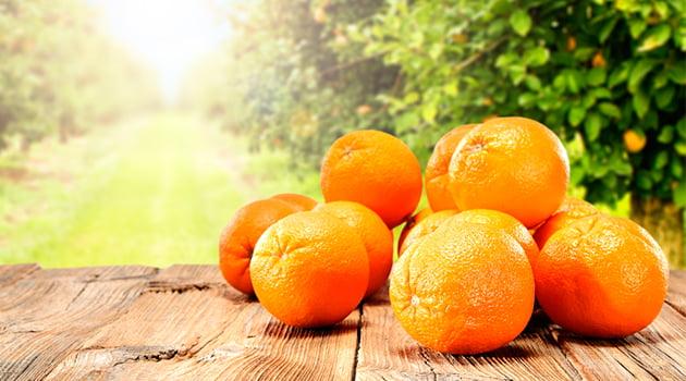 Naranja-desayuno