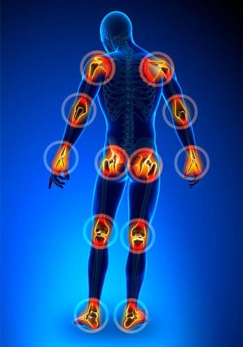 ¿Cómo mejorar nuestras articulaciones y huesos?