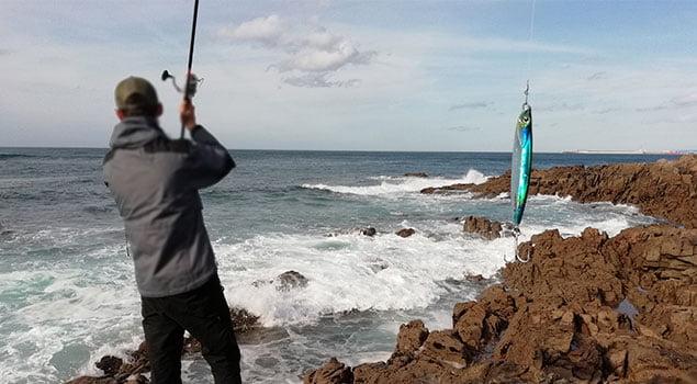 La pesca de la lubina