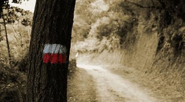 Trail por etapas
