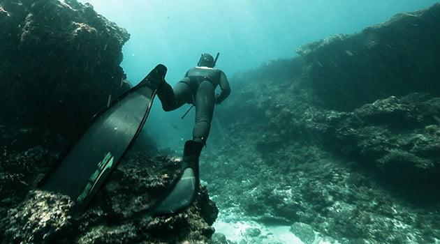 Técnicas de pesca submarina | Blog Submarinismo Decathlon